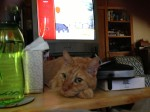 """""""You watch the TV. I'll watch you."""""""